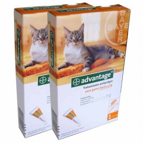 Advantage 40 gatos -4Kg (4 Pipetas)