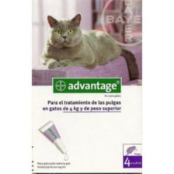 Advantage 80 gatos Para Gatos de mas de 4Kg (4 pipetas)
