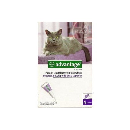 Advantage 80 gatos Para Gatos de mas de 4Kg (4 pipetas)