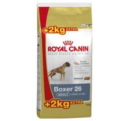 Royal Canin Boxer Adulto 12kg + 2kg Gratis