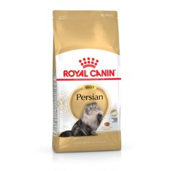 Royal Canin Persian Gato