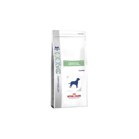 Royal Canin Veterinay Diet Dental Perros