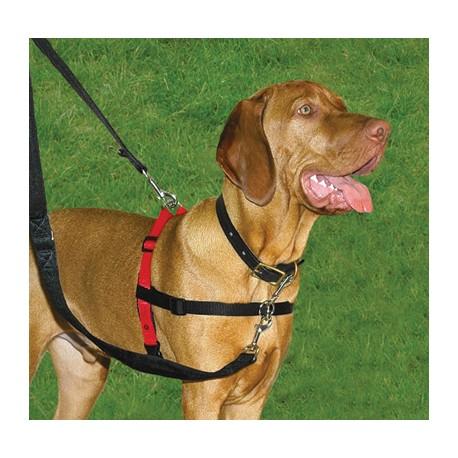 Harnes Halti para perros