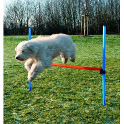 Vallas Agility Altura Regulable