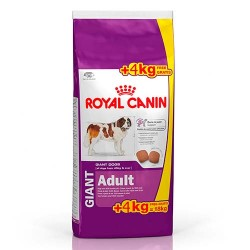 Oferta Royal Canin Giant Adult 15KG + 4KG