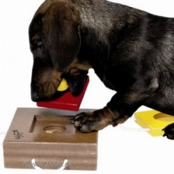 Dog Activity Gamble Box