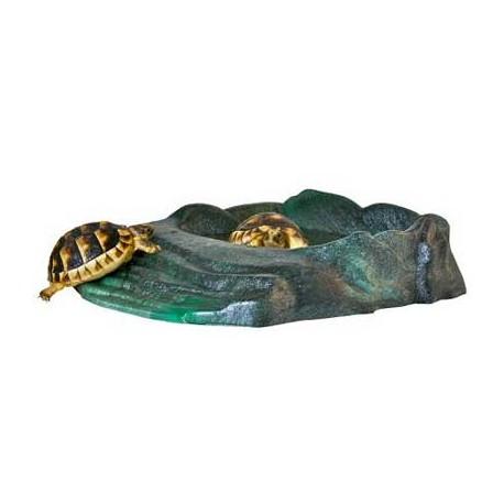 Repti Rampa Reptiles