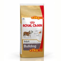 Royal Canin Bulldog Ingles Adulto 12kg + 2 Kg Gratis