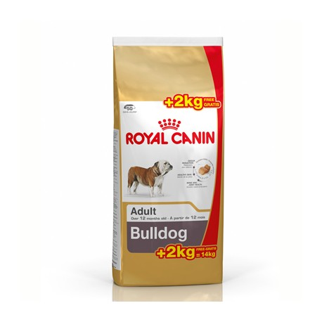 Royal Canin Bulldog Ingles Adulto 12kg + 2 Kg Gratis