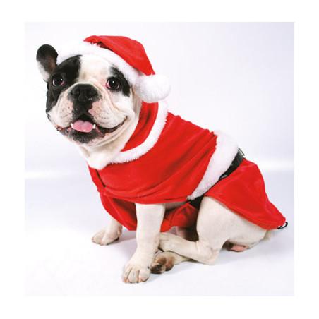 Disfraz Papa Noel con Gorro