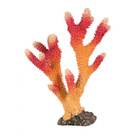 Coral Alto Acuario 26 cm