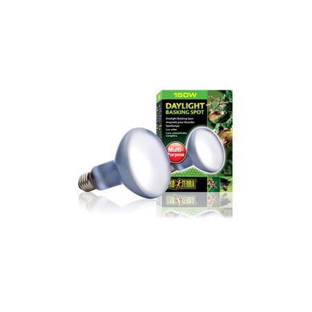 Daylight Luz Natural y Termo-Regulación