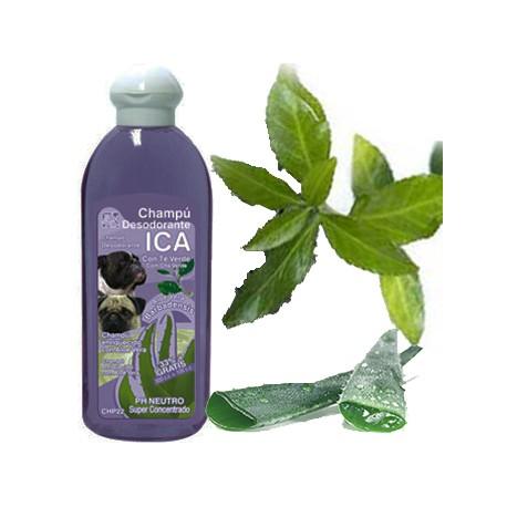 Champú Desodorante Te Verde y Aloe Vera