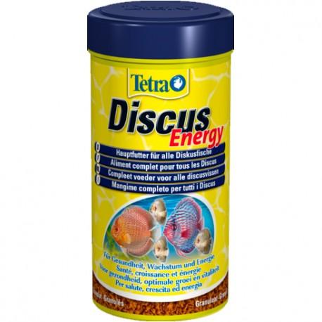 Tetra Discus Energy
