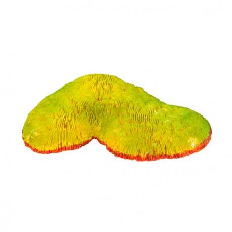 Coral Decoracion Acuario 17 cm