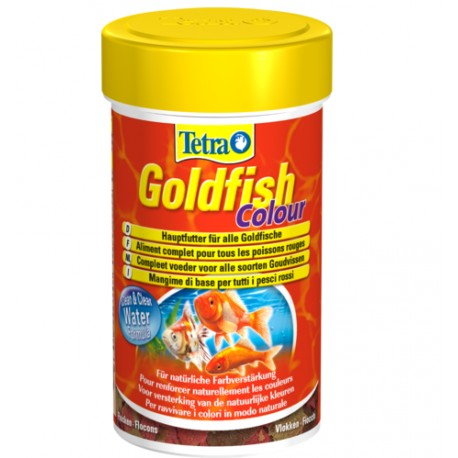 Tetra Goldfish Colour