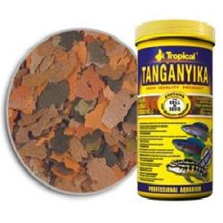 Tropical Tanganyika Ciclidos
