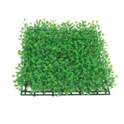 Planta Plástico de Fondo Salvacrías Mini-Cardamine Modelo 1