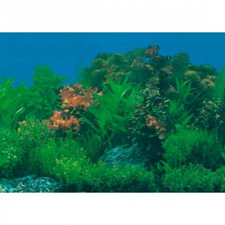 Laminas decoracion Acuarios Plantas High Water