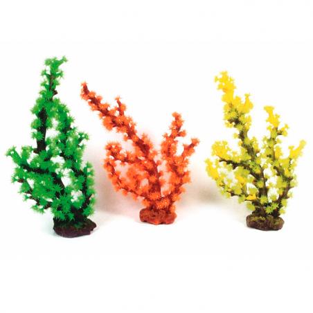 Coral Arbol Colores Decoracion Acuario