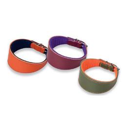 Collar de Cuero para Galgos Superfelt Colores