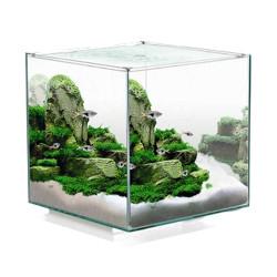 Acuario Cube Aqua 10L