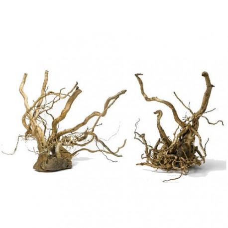 Tronco Madera Sunken Root