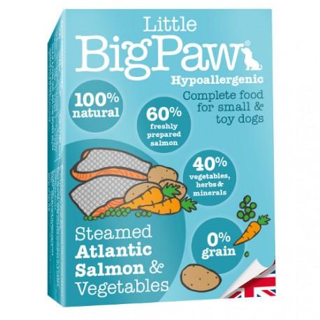 Tarrina Little Big Paw Salmón Atlántico para Perros