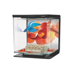Kit de Acuario para Peces Betta Sun Swirl
