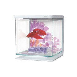 Kit de Acuario para Peces Betta Flower