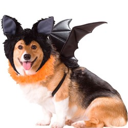 Disfraz de murciélago para perro