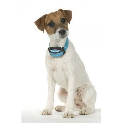 Collar antiladridos por vibración para perros
