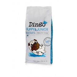 Dingo natural Puppy & Junior