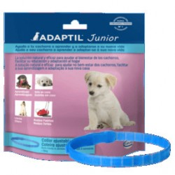 Collar de feromonas Adaptil Junior para cachorros