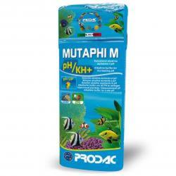 MUTAPHI M pH+ Aumenta el PH