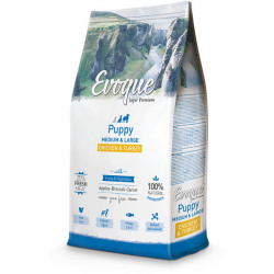 Evoque Puppy Medium & Large de pollo y pavo