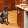 Pawz Away Mini barrera para mascotas PetSafe