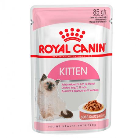Royal Canin Gatos Kitten Salsa