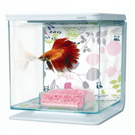 Kit de Acuario para Peces Betta Plants