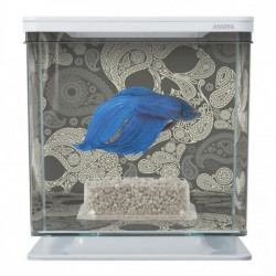 Kit de Acuario para Peces Betta Skull
