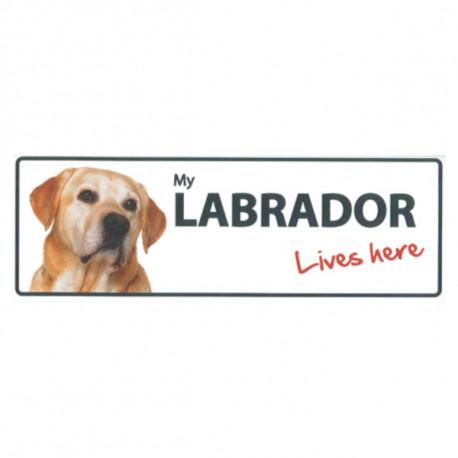 Placa Flexible Labrador