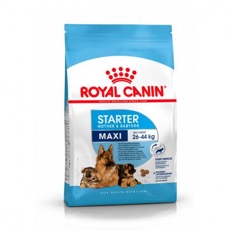 Royal Canin Starter Maxi