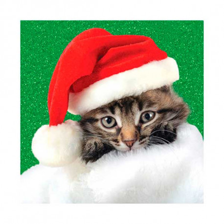 Tarjeta De Navidad De Gatito Con Gorro Papa Noel