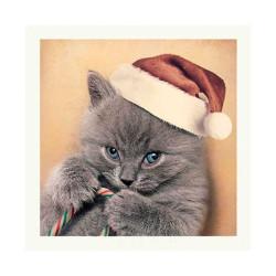 Tarjeta Navidad Gatito Gorro Navidad