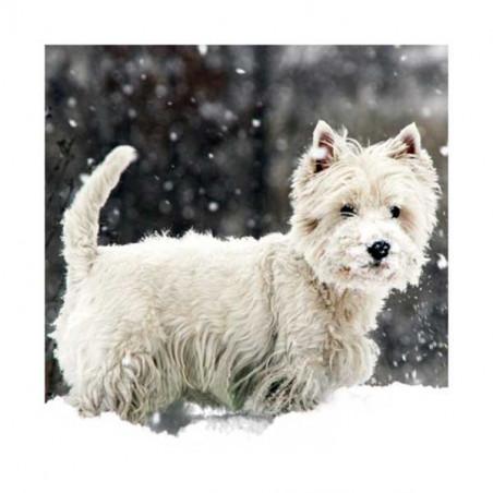 Tarjeta De Navidad Westie En La Nieve