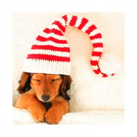 Tarjeta De Navidad Perrito Durmiendo