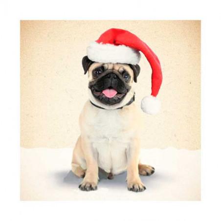 Tarjeta De Navidad Carlino Con Gorro Papa Noel