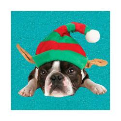 Tarjeta De Navidad Bulldog Francés Con Gorro