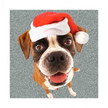 Tarjeta De Navidad Boxer Con Gorro