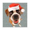 Tarjeta De Navidad Tres Reyes Magos